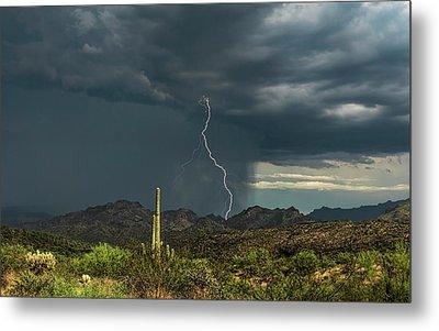 Metal Print featuring the photograph A Rainy Sonoran Day  by Saija Lehtonen