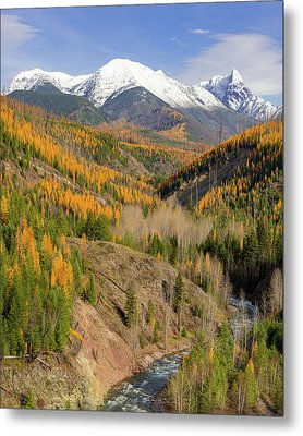 A River Runs Through It Metal Print by Jack Bell