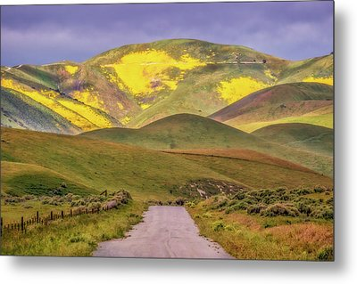 Metal Print featuring the photograph A Road Less Traveled by Marc Crumpler