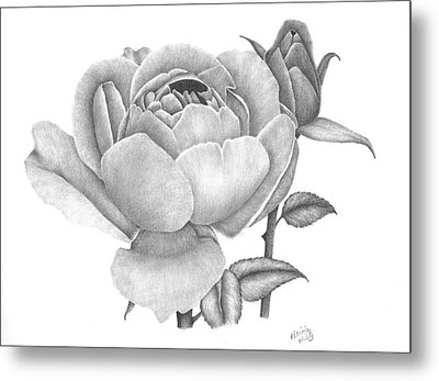 A Rose Bloom Metal Print