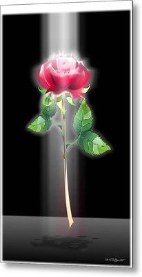 A Rose Metal Print by William R Clegg
