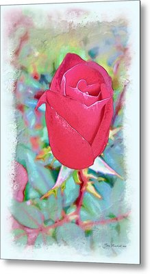 Metal Print featuring the photograph A Single Rose In October by Joan  Minchak