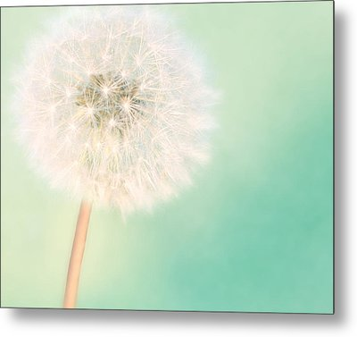 A Single Wish II Metal Print by Amy Tyler