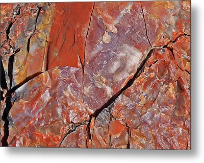Metal Print featuring the photograph A Slice Of Time by Gary Kaylor