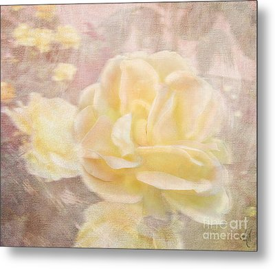 A Softer Rose Metal Print by Victoria Harrington