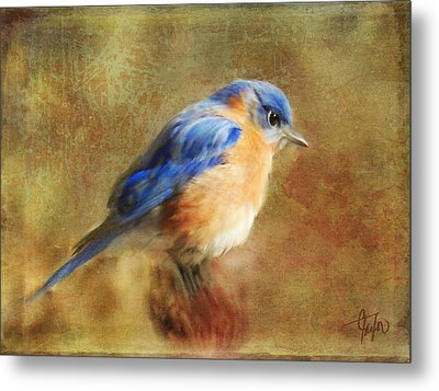 A Songbird In My Heart Metal Print