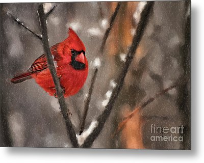 A Spot Of Color Metal Print by Lois Bryan