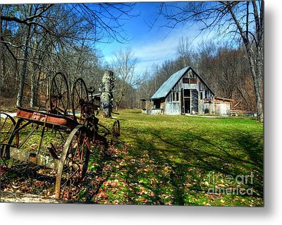 A Spring Time Story Metal Print by Mel Steinhauer