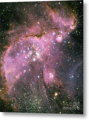 A Star-forming Region In The Small Metal Print