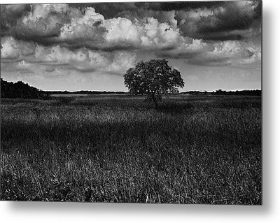 A Storm Is Coming To Wyoming Grasslands Metal Print by Jason Moynihan