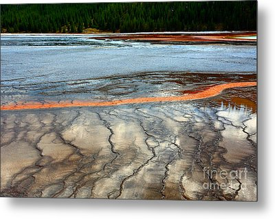 Metal Print featuring the photograph A Stream Of Gold by Robert Pearson