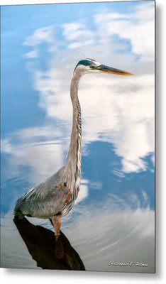 A Stroll Among The Clouds Metal Print by Christopher Holmes