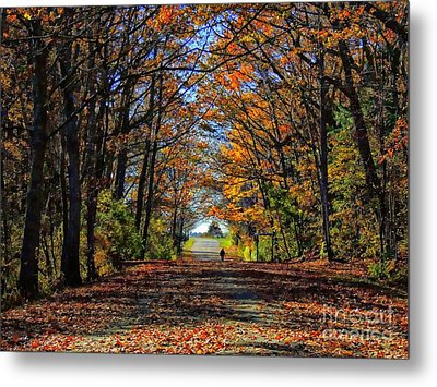 A Stroll Through Autumn Colors Metal Print by Marcia Lee Jones