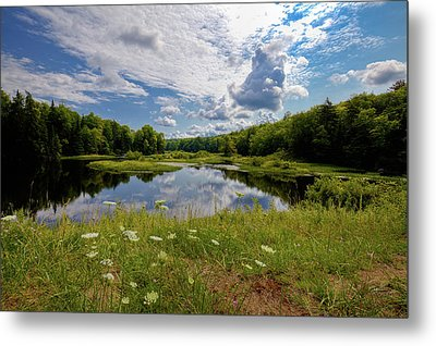 Metal Print featuring the photograph A Summer Morning At The Bridge by David Patterson