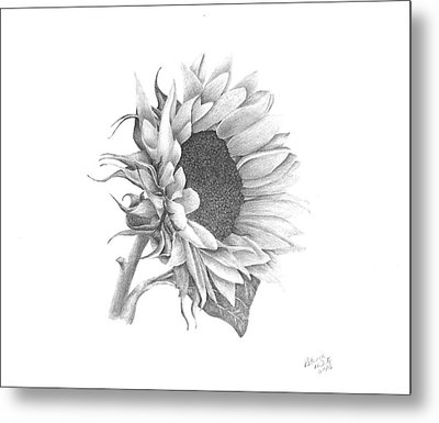 A Sunflowers Beauty Metal Print