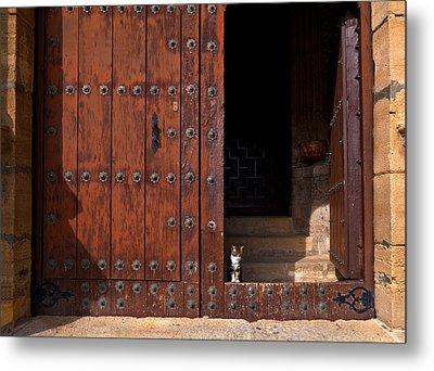 A Tabby Cat In The Doorway Metal Print