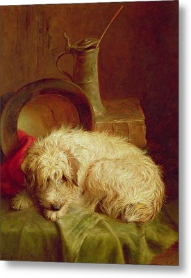 A Terrier Metal Print by John Fitz Marshall