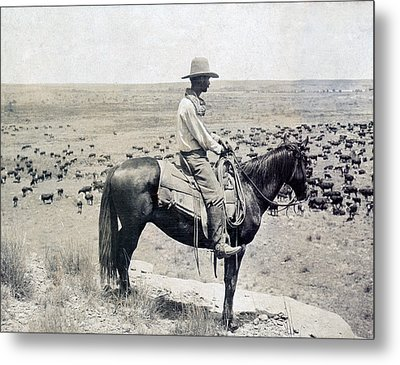 A Texas Cowboy On Horseback On A Knoll Metal Print by Everett