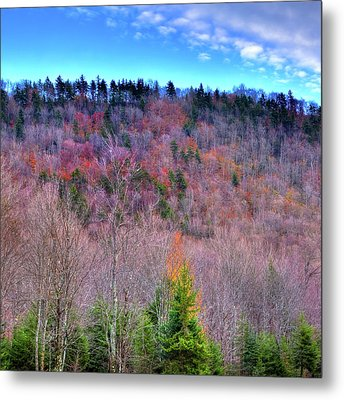 Metal Print featuring the photograph A Touch Of Autumn by David Patterson