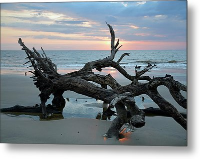 A Touch Of Morning Glory Metal Print by Bruce Gourley