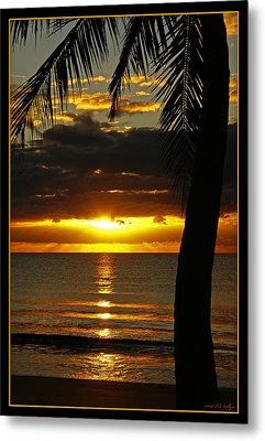 A Touch Of Paradise Metal Print by Holly Kempe