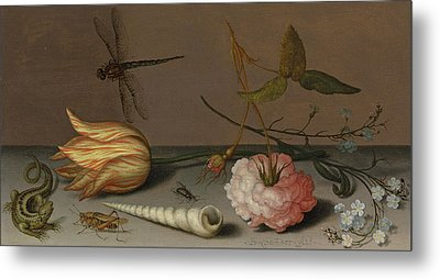 A Tulip, A Carnation, Spray Of Forget-me-nots, With A Shell, A Lizard And A Grasshopper, On A Ledge Metal Print by Balthasar van der Ast