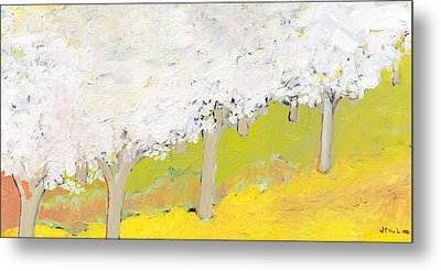 A Valley In Bloom Metal Print by Jennifer Lommers