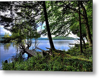 Metal Print featuring the photograph A View From Covewood by David Patterson