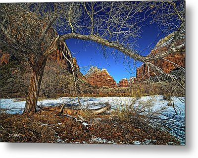 A View In Zion Metal Print by Christopher Holmes