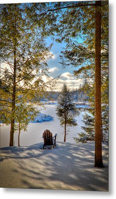 A View Of The Moose Metal Print by David Patterson