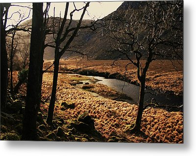 A Walk In Donegal Metal Print