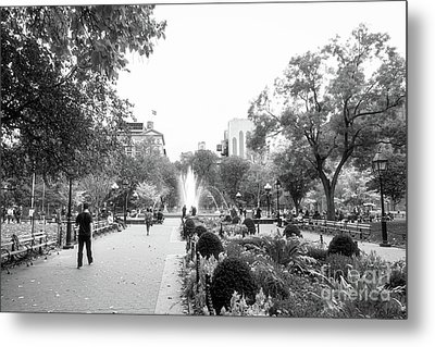 Metal Print featuring the photograph A Walk In The Park by Ana V Ramirez