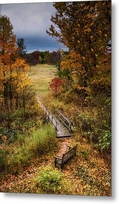A Walk In The Park I Metal Print by Tom Mc Nemar