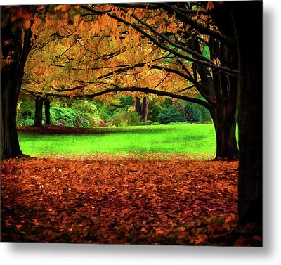 Metal Print featuring the photograph A Walk In The Park by Jordan Blackstone