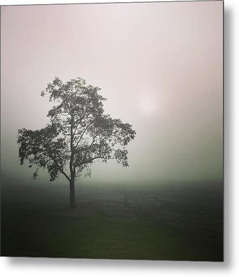 A Walk Through The Clouds #fog #nuneaton Metal Print by John Edwards