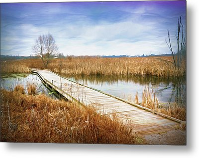 A Warm Day In February Metal Print