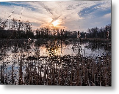 A Wetlands Sunset Metal Print