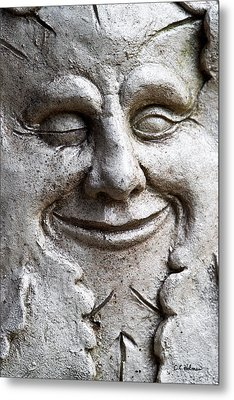 A Wink And A Smile Metal Print by Christopher Holmes