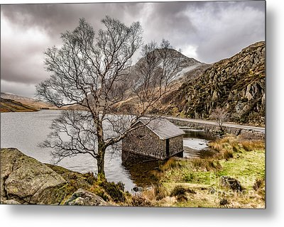 A Winter's Day Metal Print by Adrian Evans