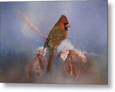 Metal Print featuring the photograph A Winters Day by Lana Trussell