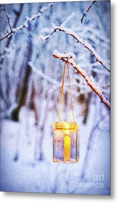 A Winters Tale Metal Print by Tim Gainey