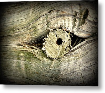 A Wooden Eye Metal Print