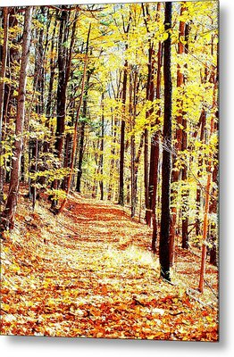 A Yellow Wood Metal Print by Joshua House