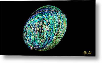 Metal Print featuring the photograph Abalone On Black by Rikk Flohr