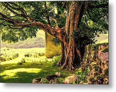 Abandoned Ruins Metal Print by Jenny Rainbow