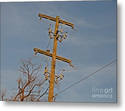 Abandoned Utility Pole At Lorton Reformatory Metal Print by Ben Schumin