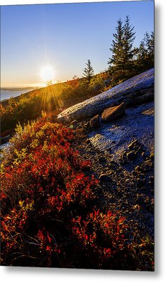 Above Bar Harbor Metal Print by Chad Dutson