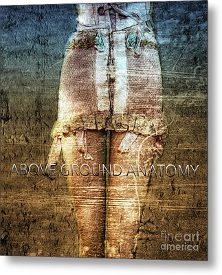 Above Ground Anatomy  Metal Print by Steven Digman
