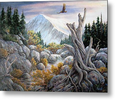 Above It All Metal Print by Don Trout