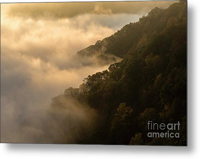 Metal Print featuring the photograph Above The Mist - D009960 by Daniel Dempster